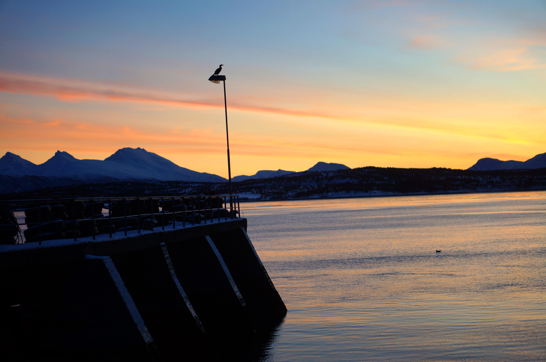 Sonnenaufgang mit Kai/Pier/Anlegestelle - weiß irgendwer, wie dieses Ding adäquat zu heißen hat?
