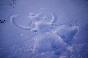 Toller (Schnee)EISengel